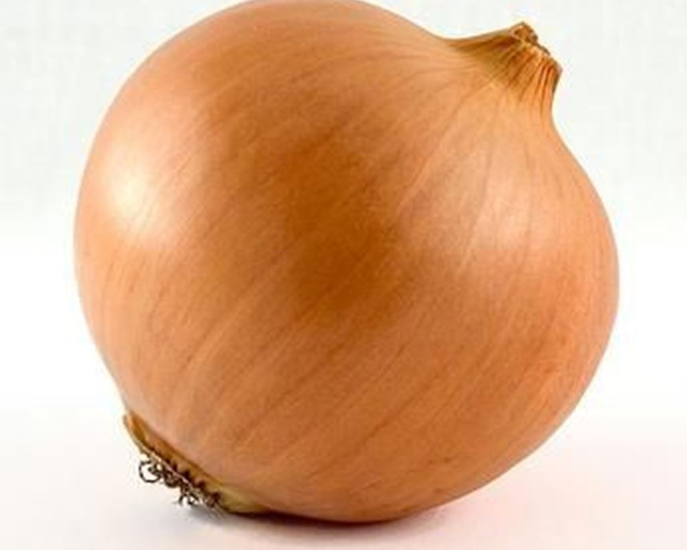 Onion: Yellow