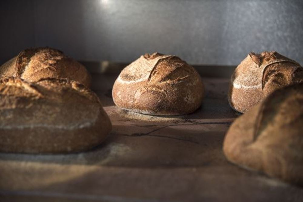 Bread Wholemeal Sourdough