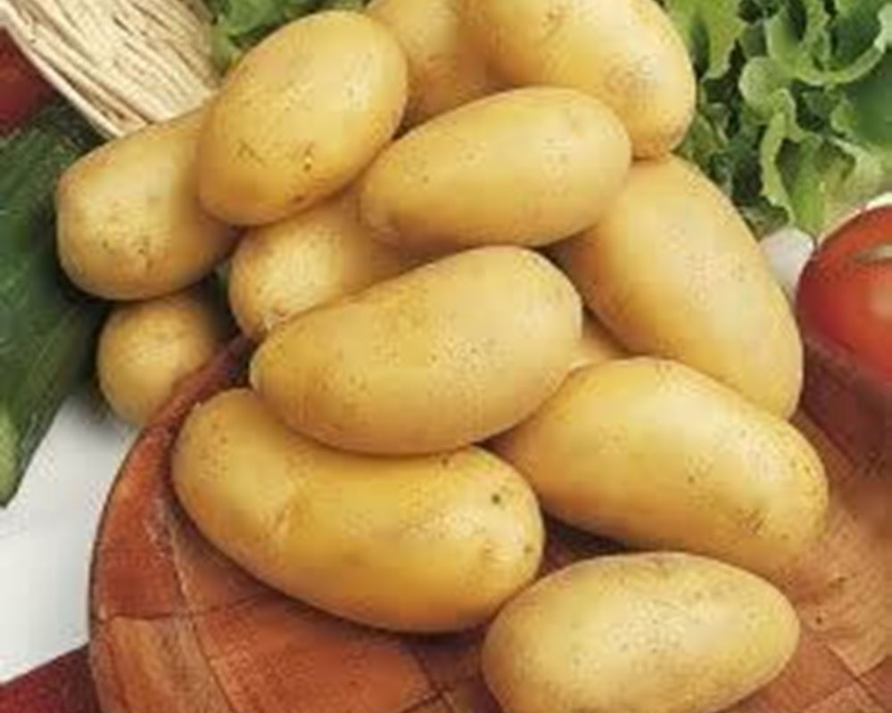 Potatoes New