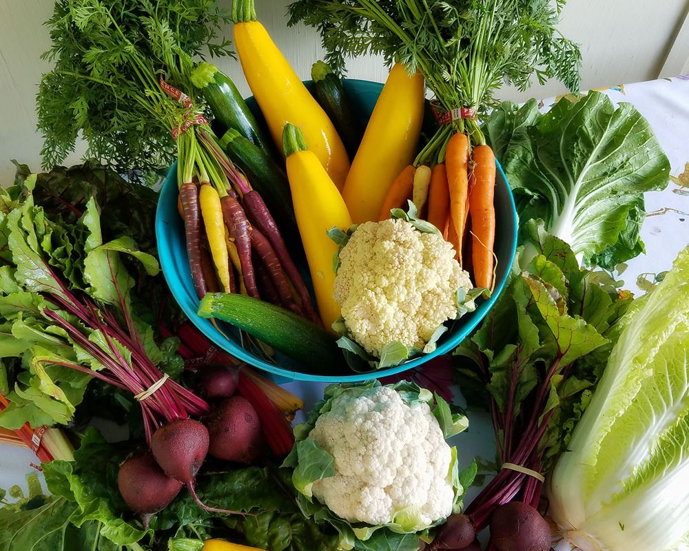 Donate A Veg Box to The People's Kitchen