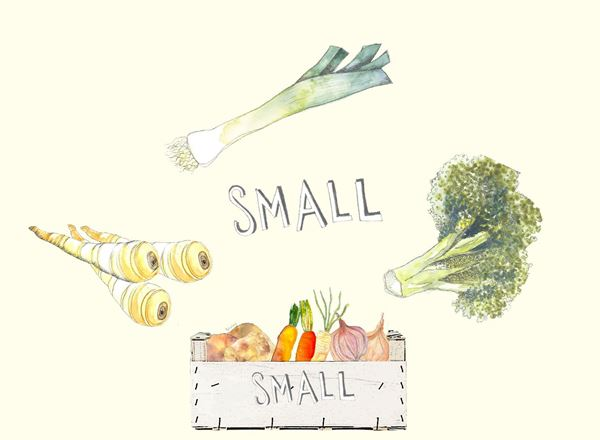 Small Veg Box