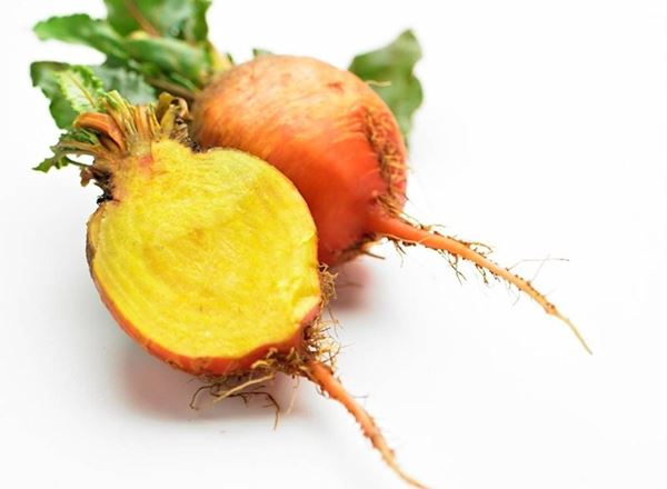 Beetroot, Golden: Organic (Bunch)