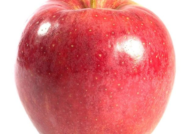 Apples: Discovery, Organic (500g)