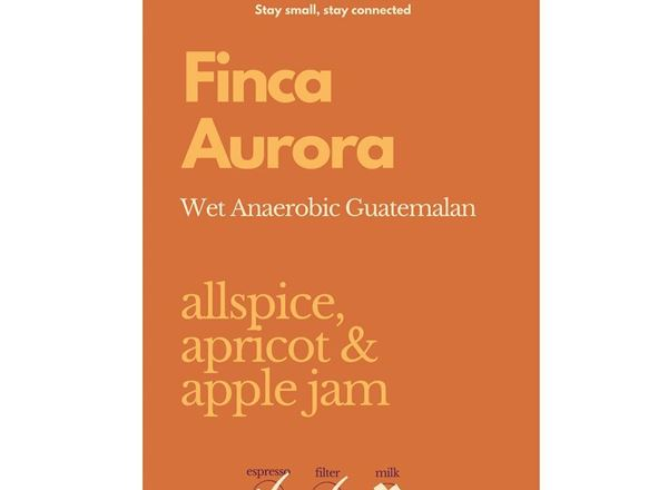 Coffee: Finca Aurora (Whole Bean) 1kg - NP