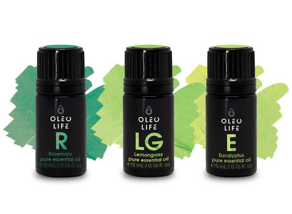 Essential Oil Trio Pack: Out In The Bush- OL