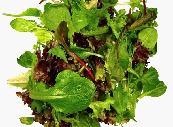 Salad Mixed Leaves 200g
