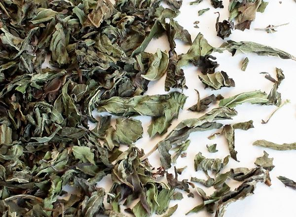 Tea Organic: Peppermint - TC
