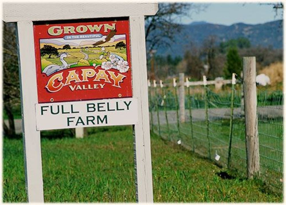 Full Belly Farm